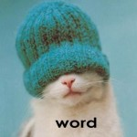 cat in hat saying WORD